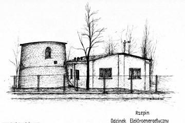 Rzepin