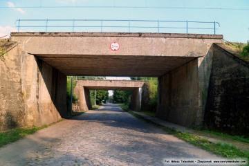 Wjazd pod wiadukty Chlastawskie od strony Zbąszynka. 19.07.2014