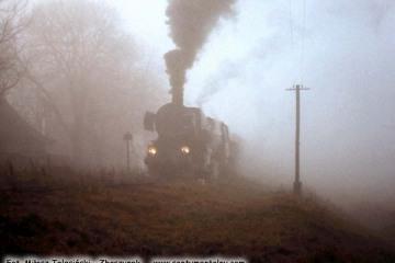 Ty2-339 z pociągiem specjalnym Ostrzeszów - Namysłaki na stacji Godziętowy w dniu 15.11.1986.