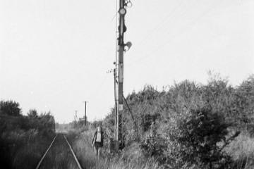 Radoszyn w dniu 03.09.1988.