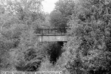 Za Sulęcinem 08.09.1986. Miejsce rozwidlenia toru do Międzyrzecza z nieczynnym do Glisna - Lubniewic - Rudnicy.  Wiadukt na fotce stanowi fragment nie czynnego.