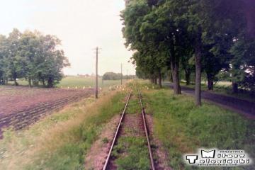 Frombork - Braniewo 13.06.1998. Widok w stronę Fromborka.