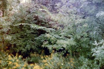 Przepust Wąskotorowy z Garbasu do Olecka przy linii Gołdap - Olecko 12.09.1990.