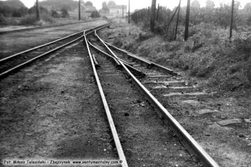 Lwówek Wąskotorowy w lipcu 1985 roku. Po prawej reszta po torze do gazowni.