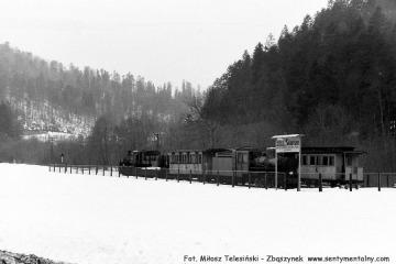 Skansen w Majdanie 28.33.1987