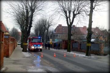 Ulica Warszawska w Zbąszynku. Wycinka pustego w środku drzewa 30.01.2017