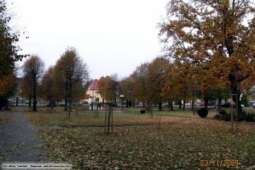 03.11.2009