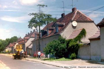 Przygotowania do ścięcia drzewa - 1995.