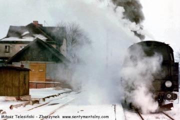 Tkt49-29 Kępno - Namysłów na stacji Bukowa Śląska w dniu 12.02.1991
