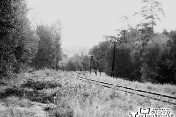 Kniazin, miejsce rozwidlenia nie czynnego od 1945 roku toru do Lubniewic - Rudnicy.