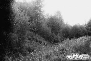 Kniazin, miejsce rozwidlenia nie czynnego od 1945 roku toru do Lubniewic - Rudnicy 08.09.1986.