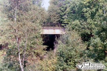 Kniazin, miejsce rozwidlenia nie czynnego od 1945 roku toru do Lubniewic - Rudnicy 23.09.1989.