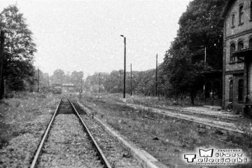Przewóz 22.08.1986. W oddali lokomotywownia. W prawo tor do Sanic {Horka), w lewo do Potoku. Dalej pociąg towarowy z Sanic.