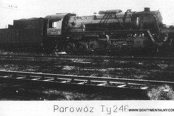 Ty246