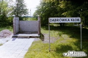 Dąbrówka Kłobucka 18.06.1993