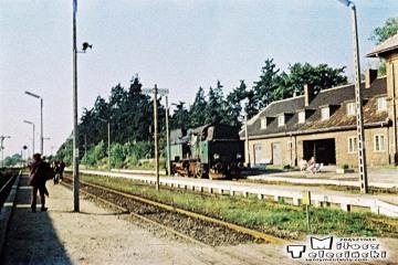 """Skwierzyna 03.10.1987. Podczas zmiany kierunku pociągu specjalnego. W oddali """"nasz"""" parowóz Tkt48-28."""