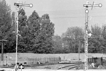 Krzeszyce w dniu 30.05.1987.