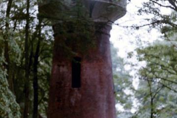 Lubniewice 05.08.1990. Wieża ciśnień przy dawnej stacji.