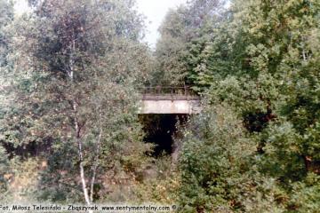 Za Sulęcinem 23.09.1989. Miejsce rozwidlenia toru do Międzyrzecza z nieczynnym do Glisna - Lubniewic - Rudnicy. Wiadukt na fotce stanowi fragment nie czynnego.