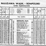 nieszawa_sompolno_47