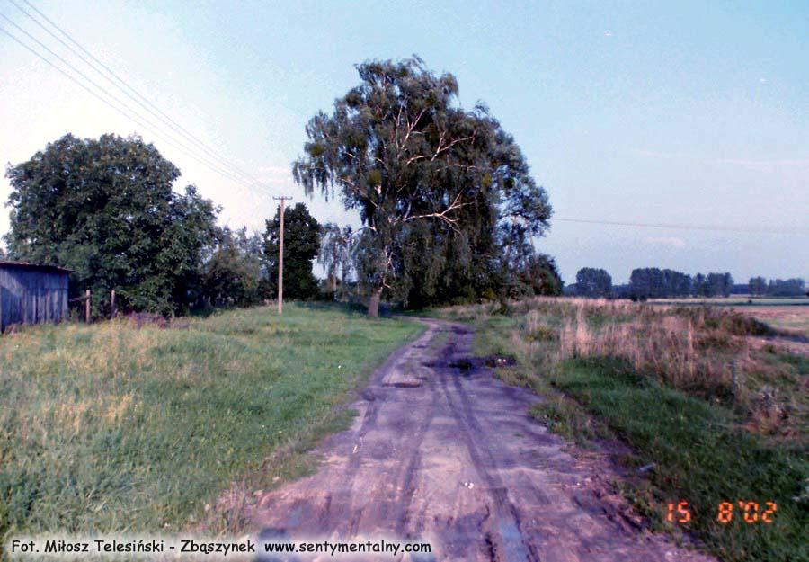 Miejsce przy szosie z Dąbrówki Wlkp. do Zbąszynka, w którym dokładnie znajdował się peron międzyrzecki.
