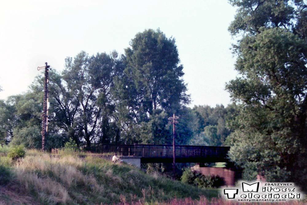 Odejście toru do Międzychodu w Zbąszyniu 05.07.1994