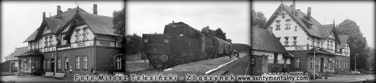Stacja Trzciel 04.08.1986. Po środku Ty2-262 z pociągiem osobowym Zbąszynek - Międzychód w dniu 01.09.1986.