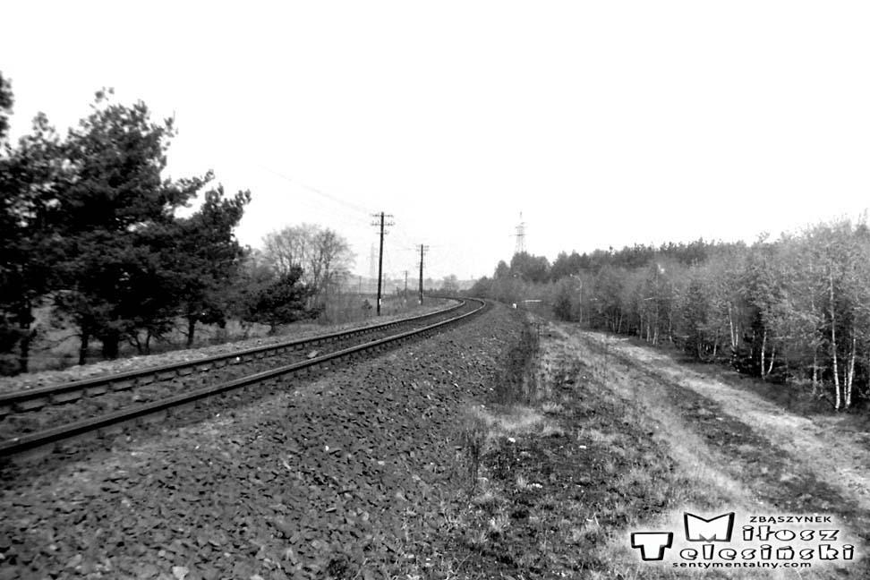 Miejsce przy linii z Międzyrzecza, z którego od początku, to jest od 1885 do 1920 roku odgałęział się tor w kierunku Zbąszynia. Obecny tor (po lewej) jako nowo wybudowany i oddany w 1930 roku o długości 3.2 km zakręca do Zbąszynka. Prosto do Międzyrzecza, po prawej ślad po starym torze ze Zbąszynia, który dołączał do dalszej części w stronę Dąbrówki w latach 1885- 1920.