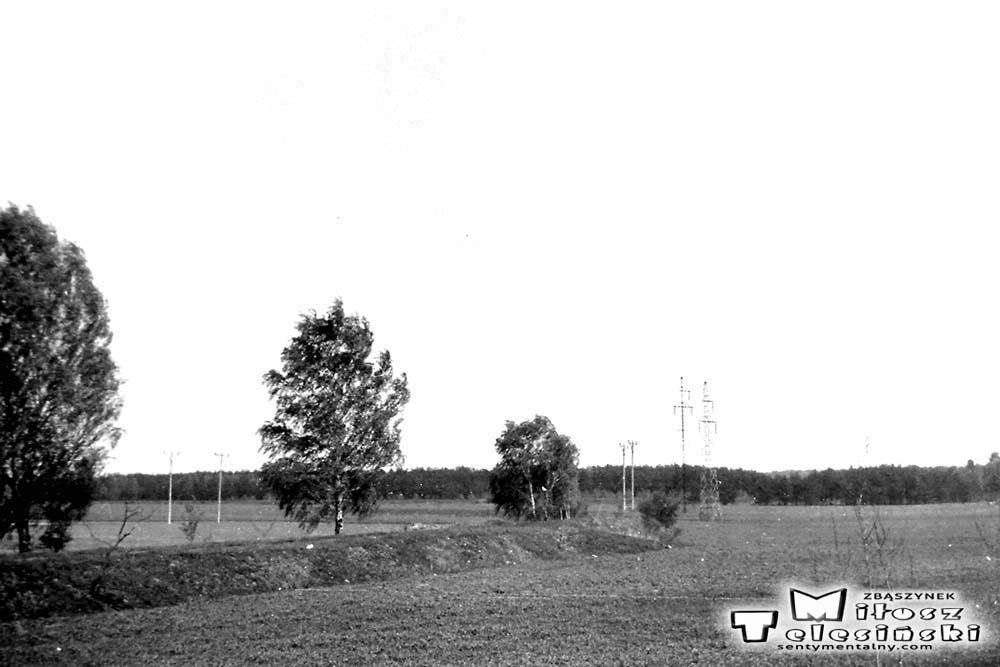 Nasyp po tymczasowym (1920 – 30) torze łączącym główną linię z traktem do Międzyrzecza.
