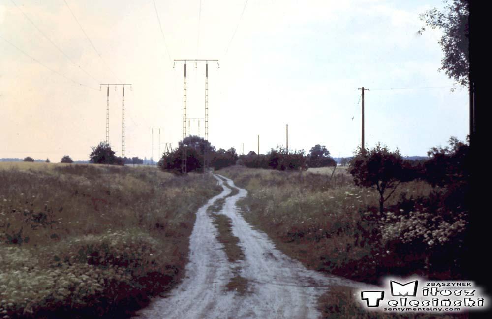 Widok od strony wschodniej w kierunku Zbąszynia, stojąc tuż obok czerwonego domku. Wyraźnie zauważalne rozchodzące się nasypy – tory w trzech kierunkach. Prosto szlak dwutorowy do Zbąszynia – Poznania, w lewo łuk do Dąbrówki Wlkp. – Międzyrzecza. W prawą stroną rozpoczyna się biegnąca z lekkim spadem bocznica sięgająca aktualnego nasypu do Międzyrzecza. Bocznicę utworzono w 1923 roku z myślą za i wyładunku towaru – materiałów budowlanych podczas budowy Zbąszynka.